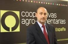 Agustín Herrero, director general de Cooperativas Agro-alimentarias de España