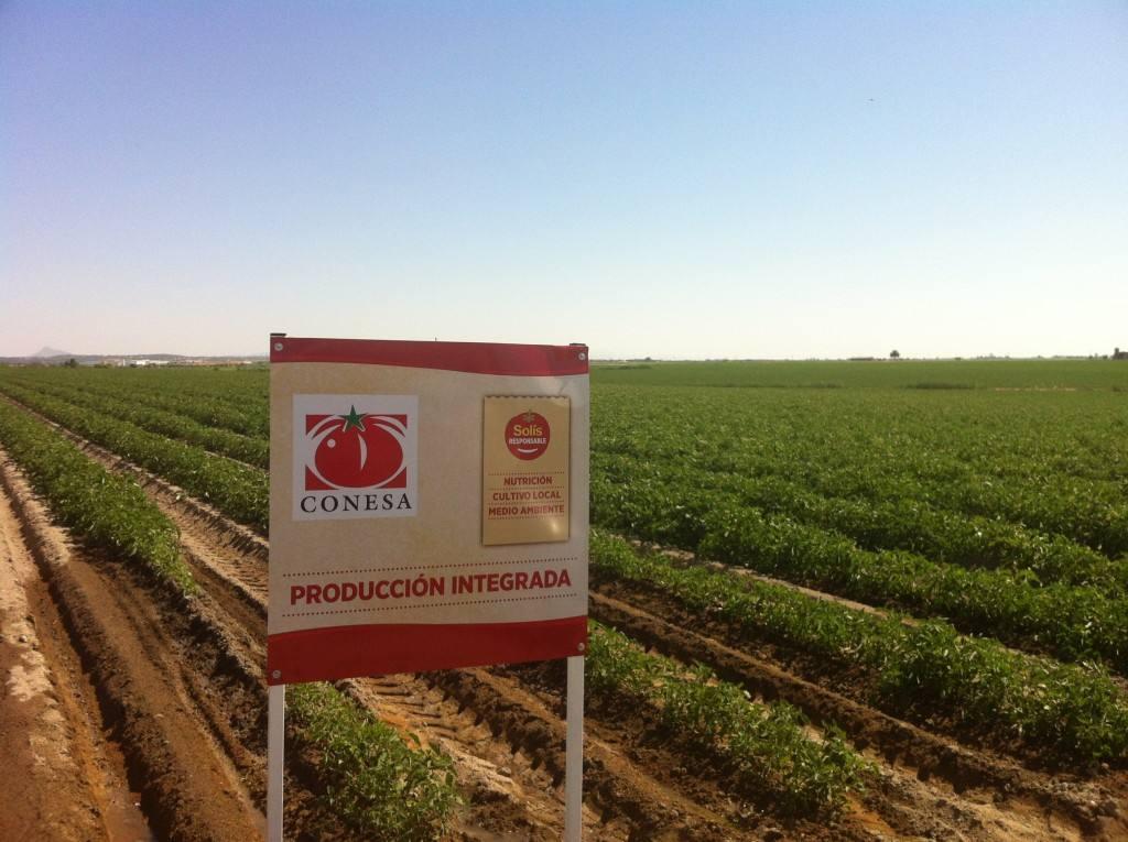"""Nestlé, Premio a la Industria Alimentaria por su  proyecto """"Solís Responsable"""""""