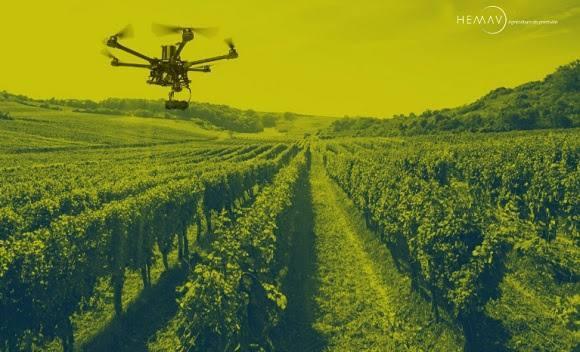 Bodegas Lahoz, mejora la producción con  drones de Hemav
