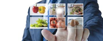Sonae, lleva al Parlamento Europeo, su Libro Blanco sobre innovación en el sector alimentario
