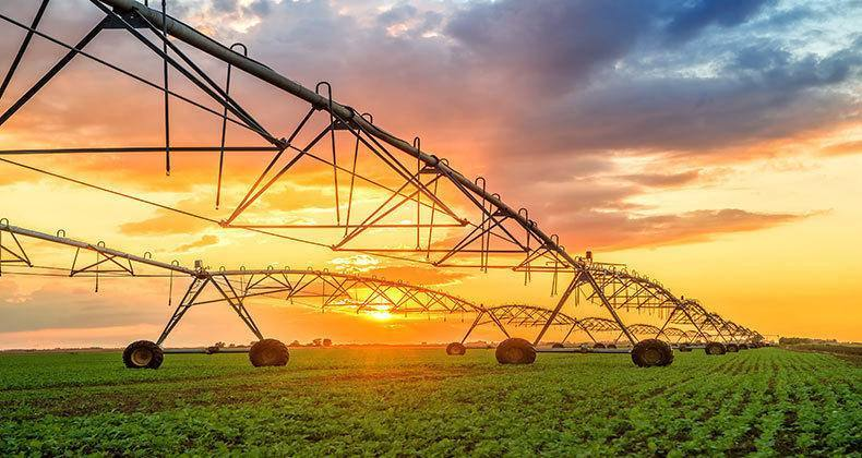 _agricultura
