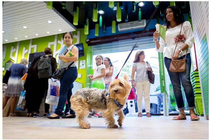 Tiendanimal abre en Lérida y alcanza las 50 tiendas