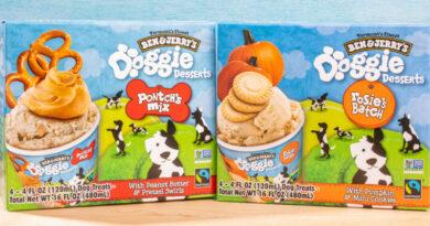 Ben & Jerry's lanza una gama de helados para perros