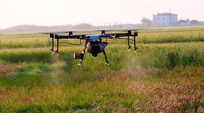 Nomen Foods incorpora drones para el tratamiento de sus arroceras